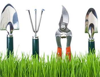 Hackthorn Gardening Club